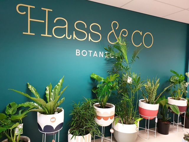my botanics hobby | Rizal Farok